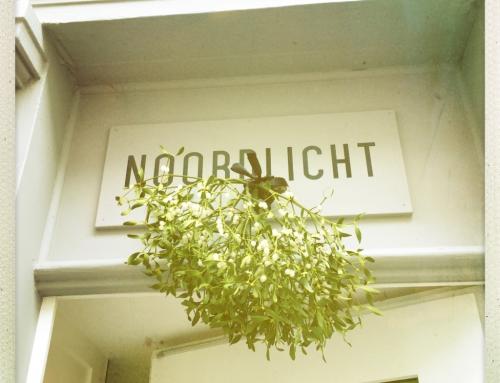 Schaffhausen – mein «Hoher Norden» der Schweiz!
